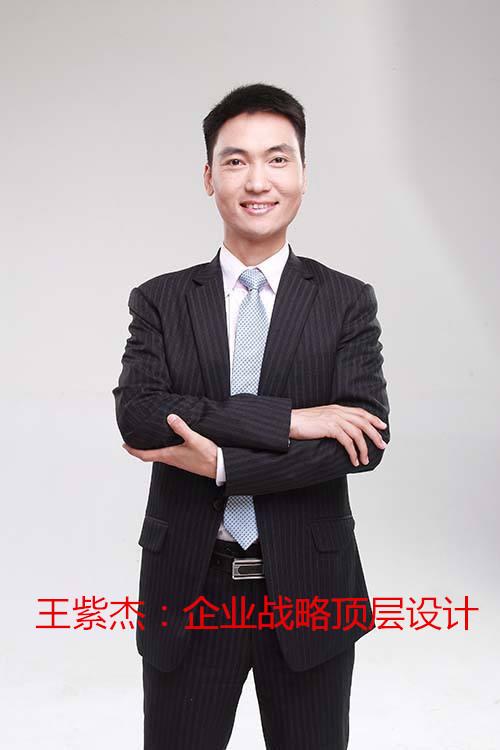 王紫杰:企业战略顶层设计