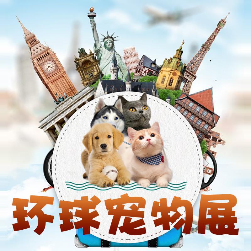 环球宠物展