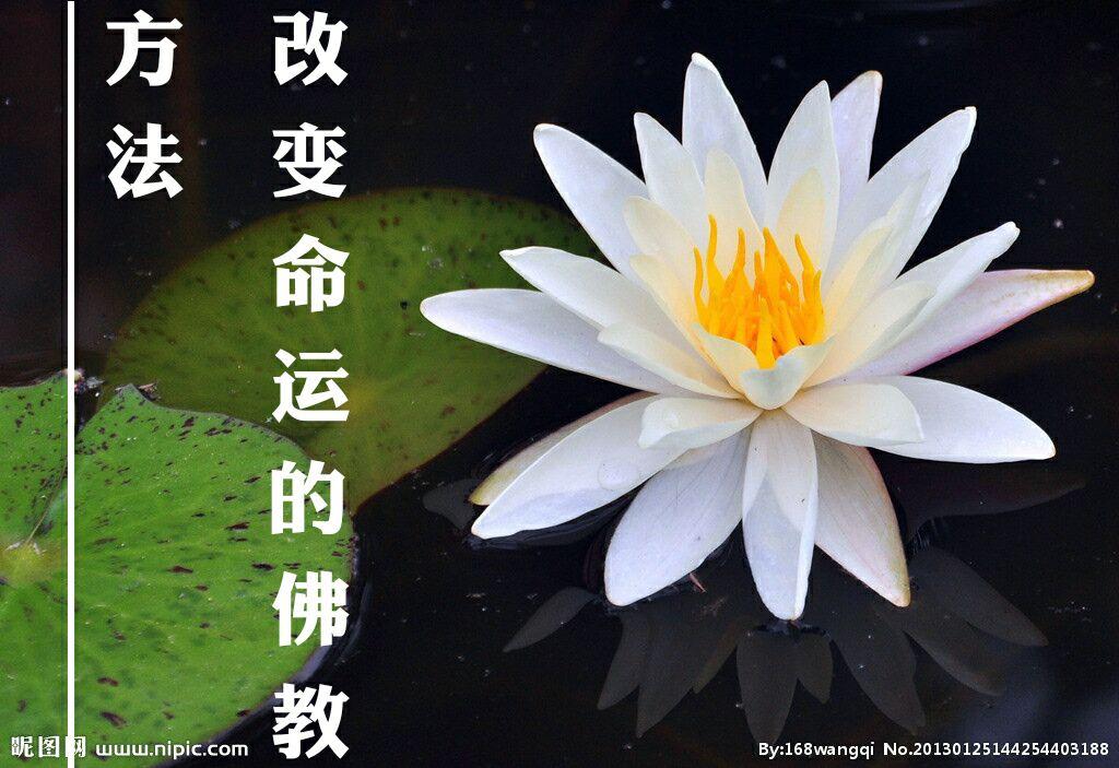 佛教改变命运的方法