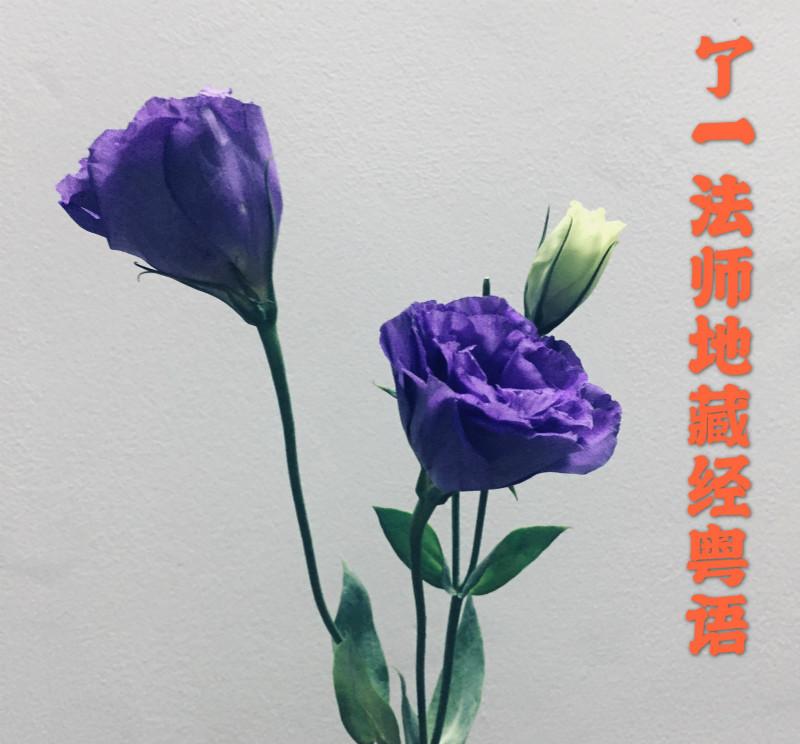 了一法师地藏经粤语