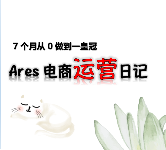 Ares电商运营淘宝7个月从0到皇冠