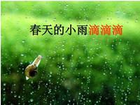 春天的小雨滴滴滴