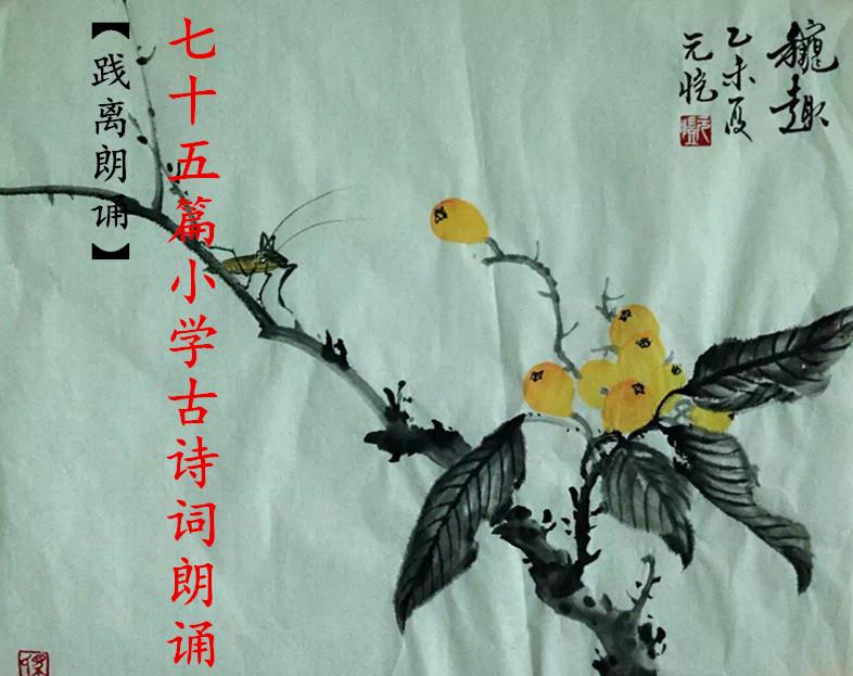 【践离诵读】75篇小学诗词朗诵(配乐版)