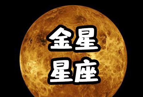 关于金星星座