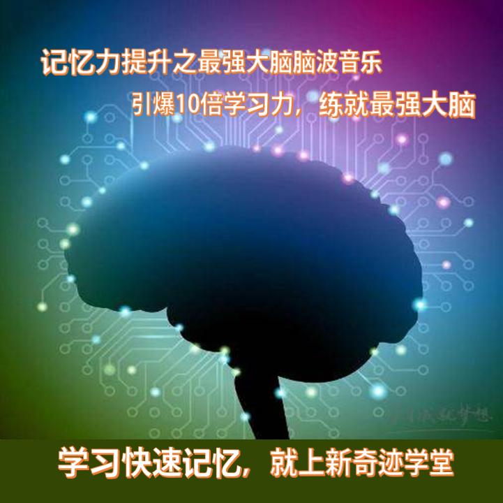 记忆力提升最强大脑脑波音乐