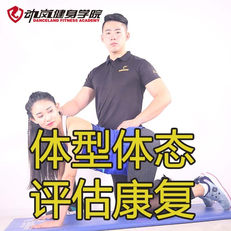 体态康复矫正——动岚健身学院