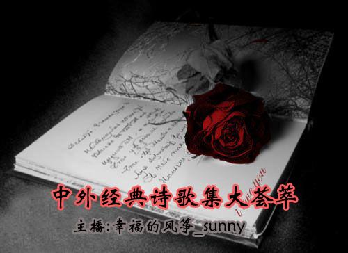 唯美爱情诗古今中外经典抒情诗