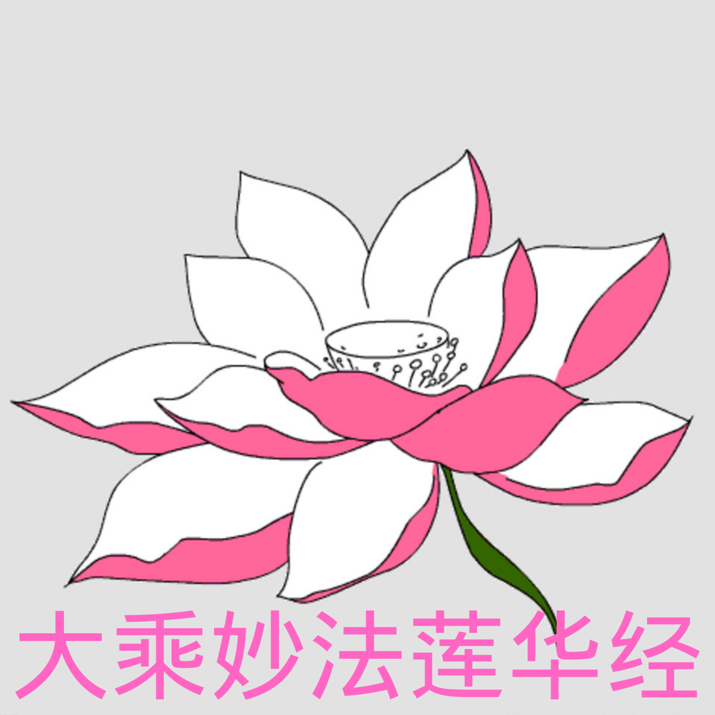 《大乘妙法莲华经》讲记 第三次修订版