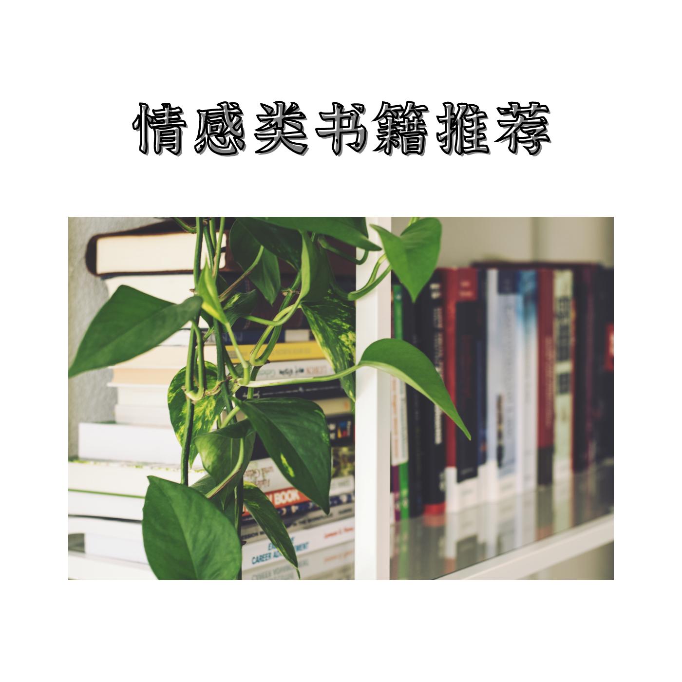 情感类书籍推荐