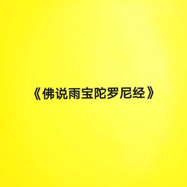 《佛说雨宝陀罗尼经》读诵版