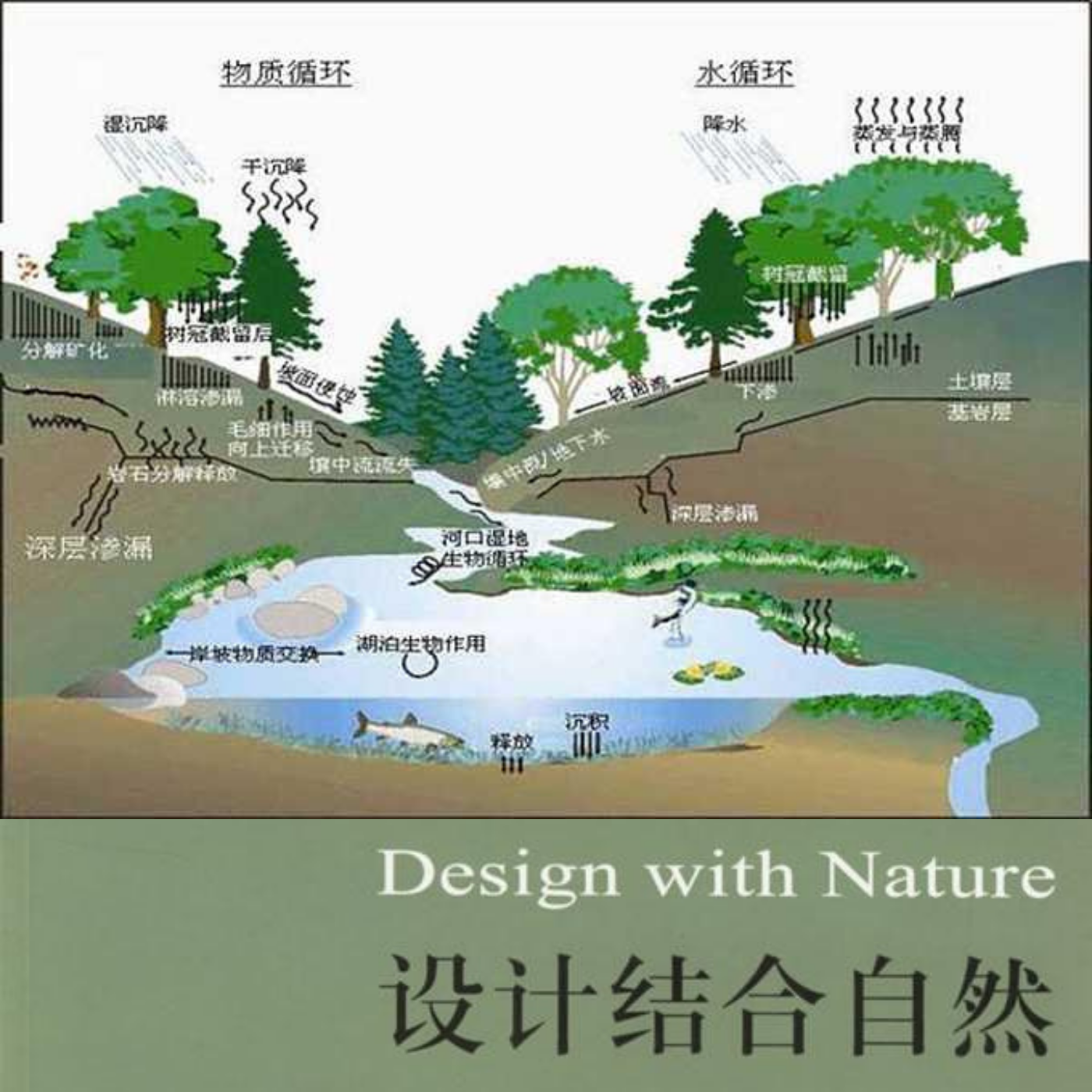 857园林生态学