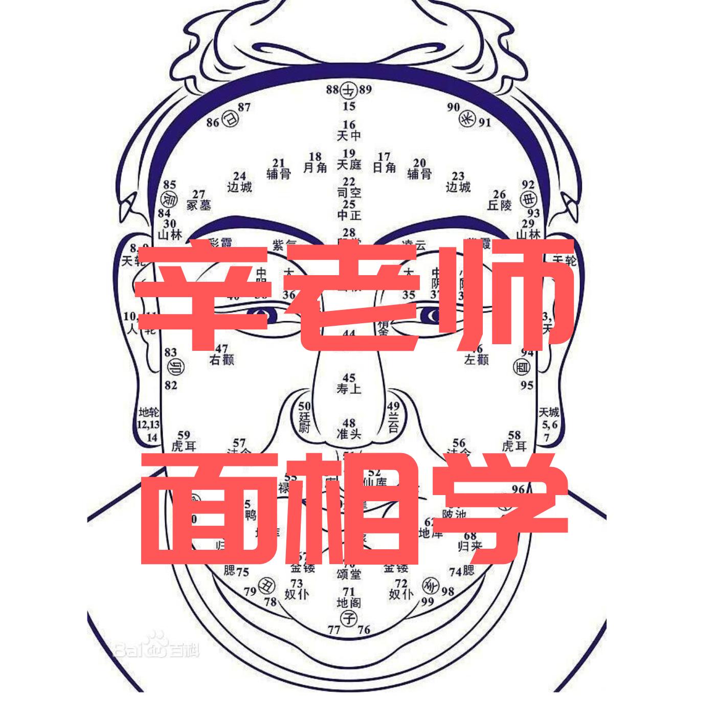 辛老师面相学 粤语
