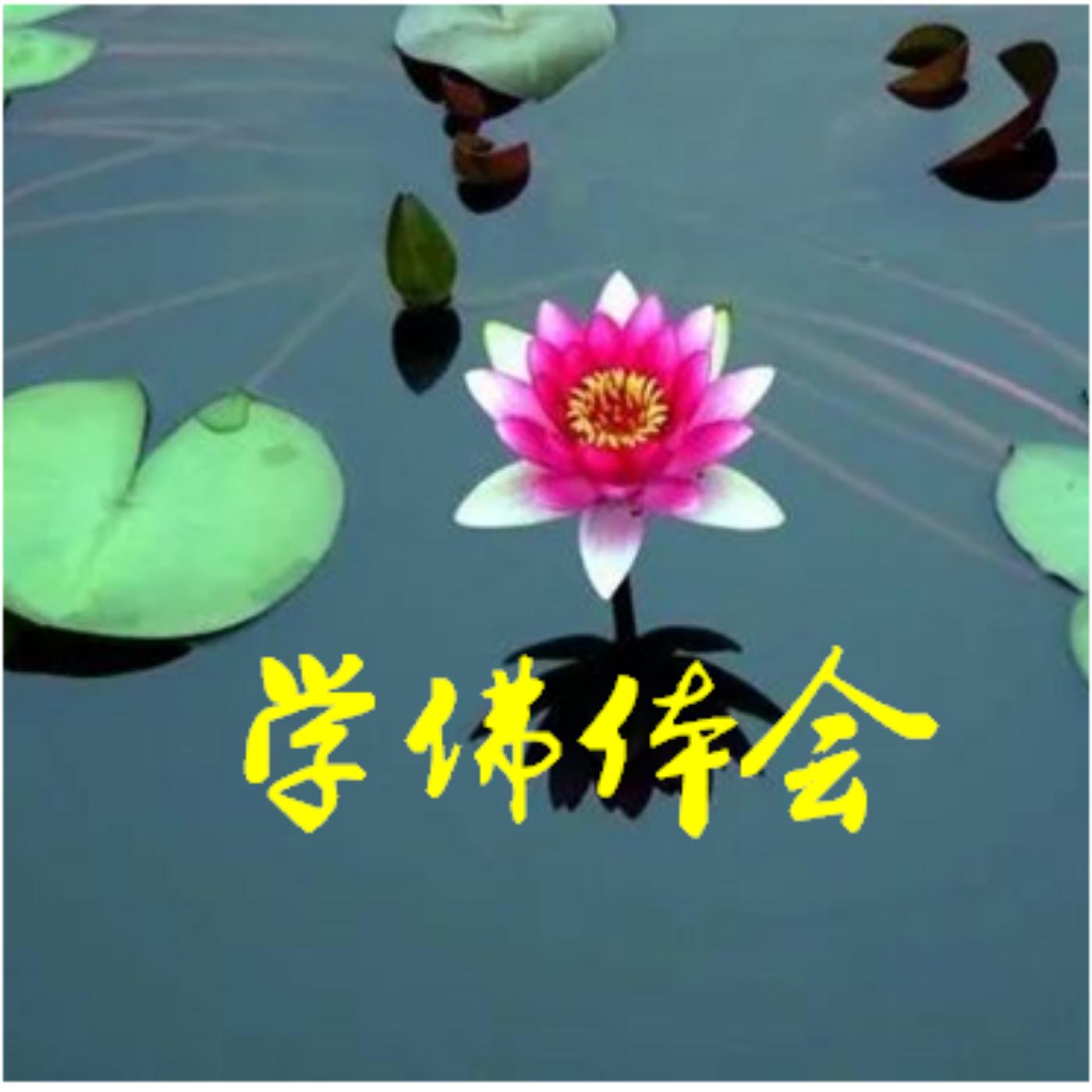佛法是智慧的教育