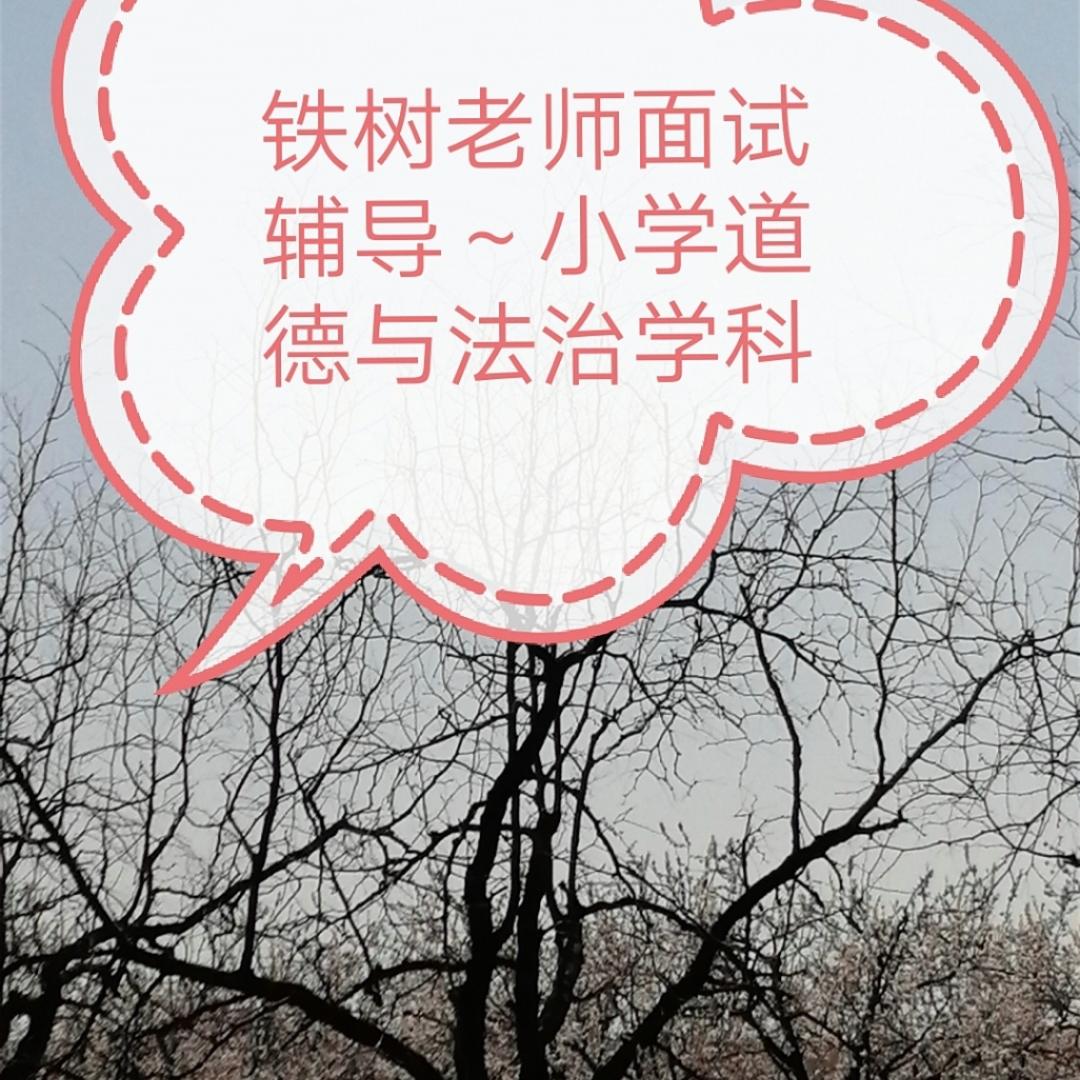 铁树老师面试辅导~小学道德与法治