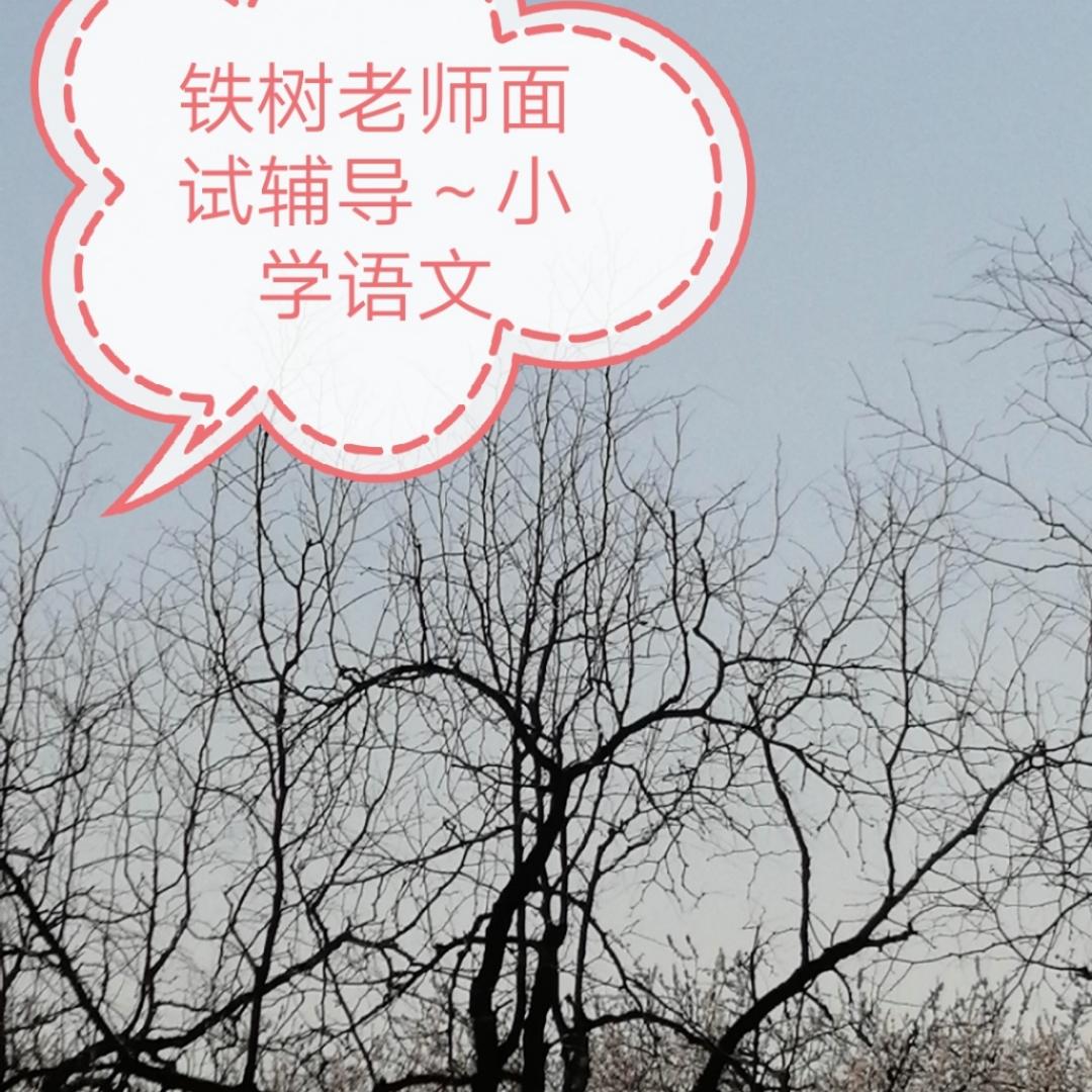 铁树老师面试辅导~小学语文