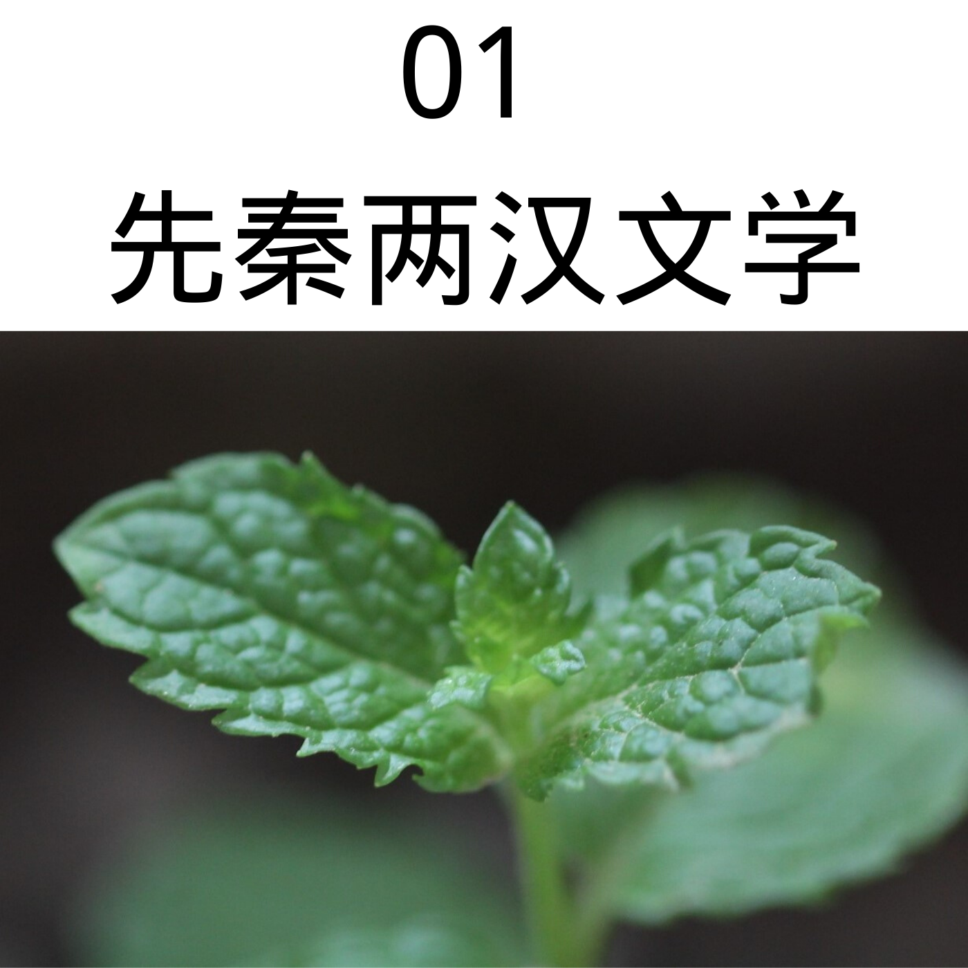 01先秦两汉文学