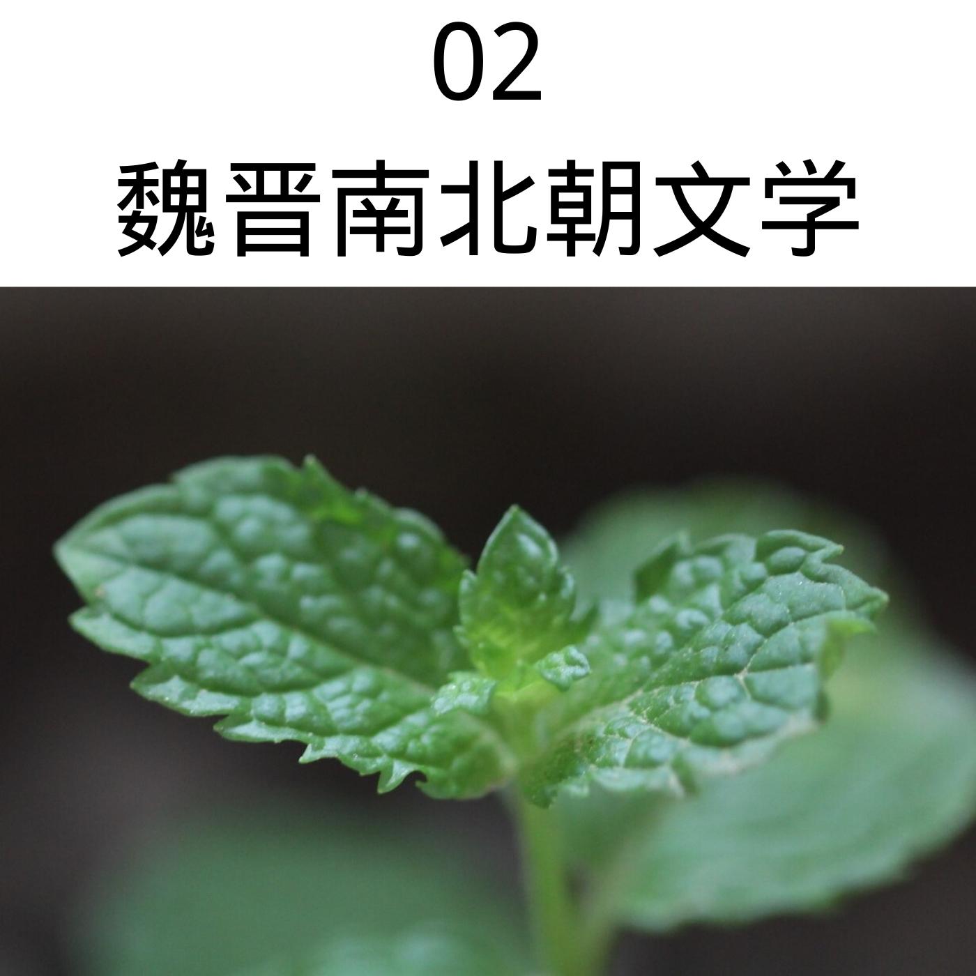 02魏晋南北朝文学