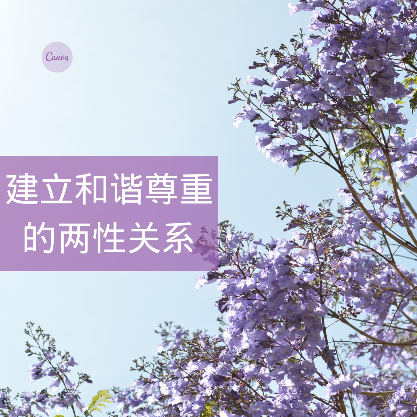 蔡礼旭老师:如何建立和谐尊重的两性关系
