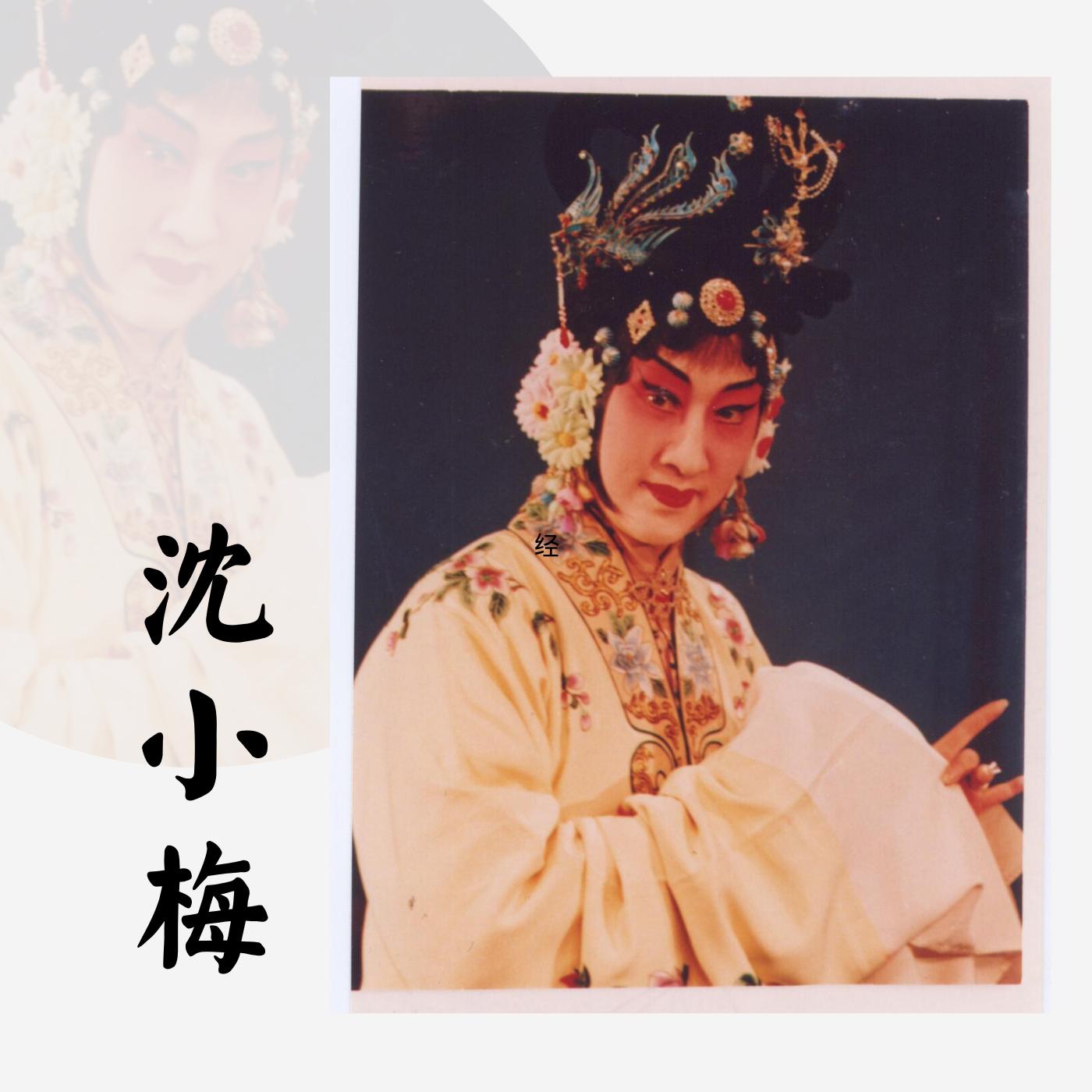 """沈小梅京剧""""梅派""""唱腔选"""