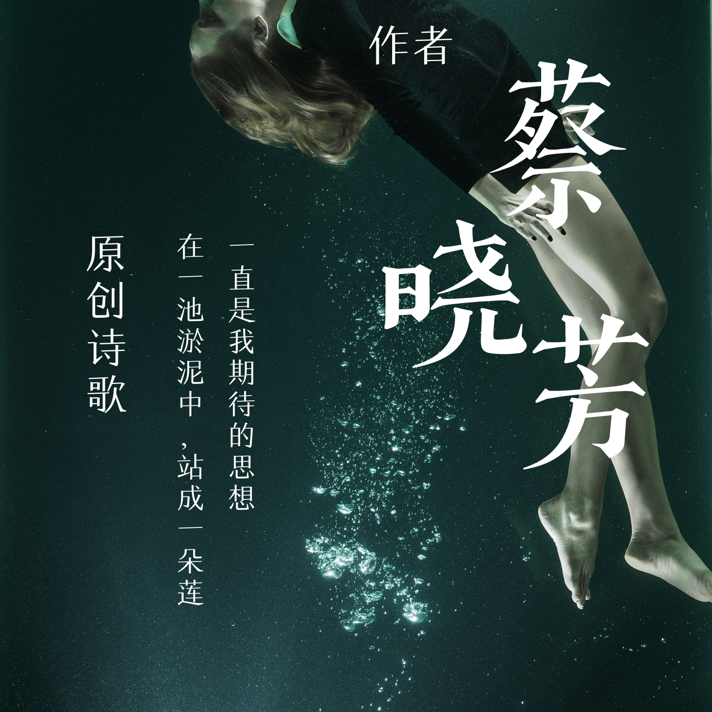 蔡晓芳的诗——唯宏朗诵名家作品