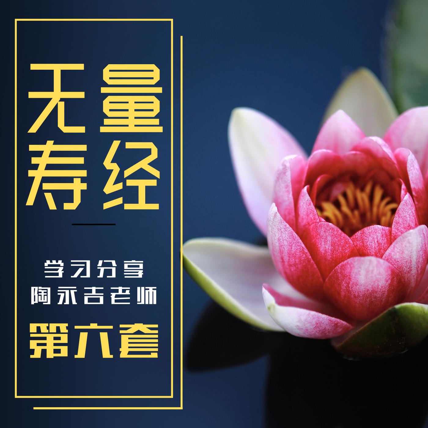 无量寿经丨陶老师学习分享第六套