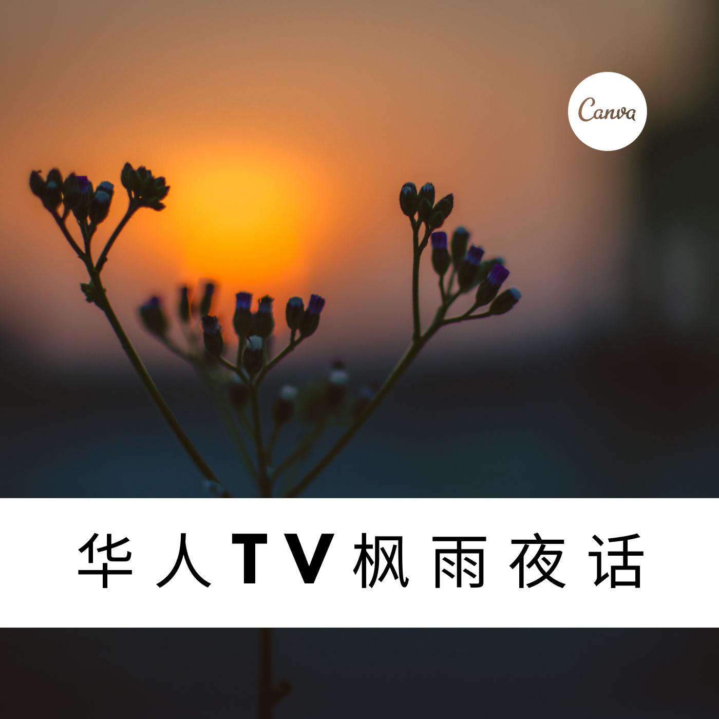 华人TV枫雨夜话