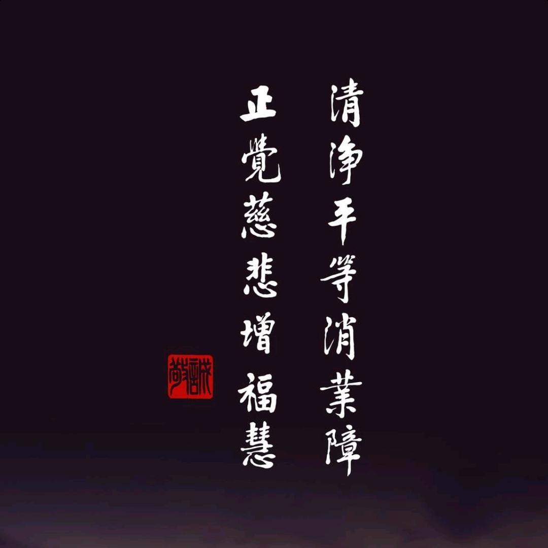 复讲刘老师2018年讲的《无量寿经》