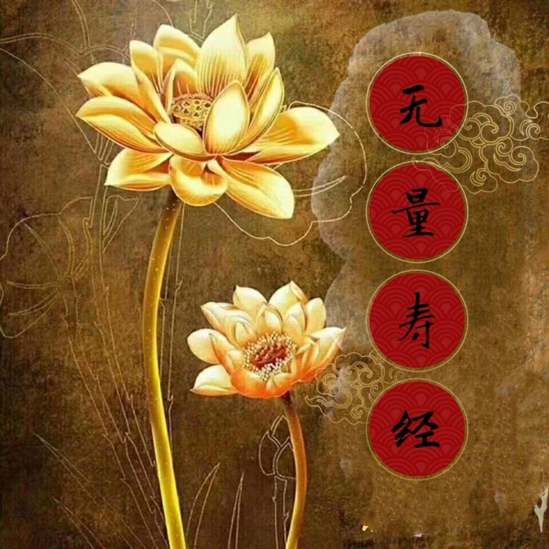 佛说大乘无量寿,庄严清净平等觉经〈诵读〉