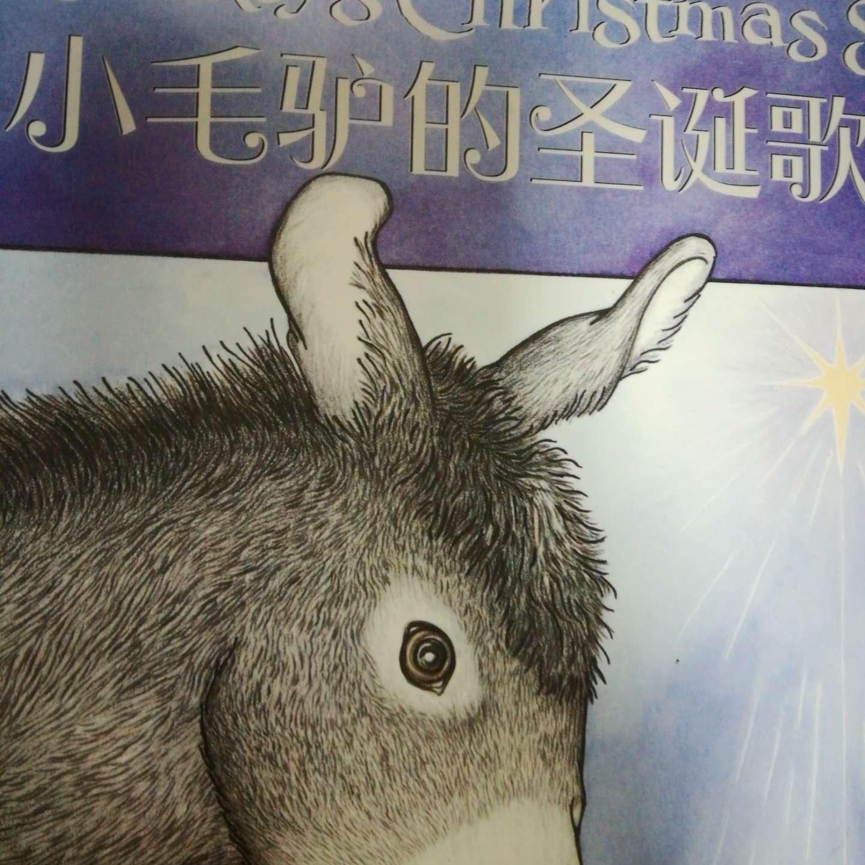 小毛驴的圣诞歌
