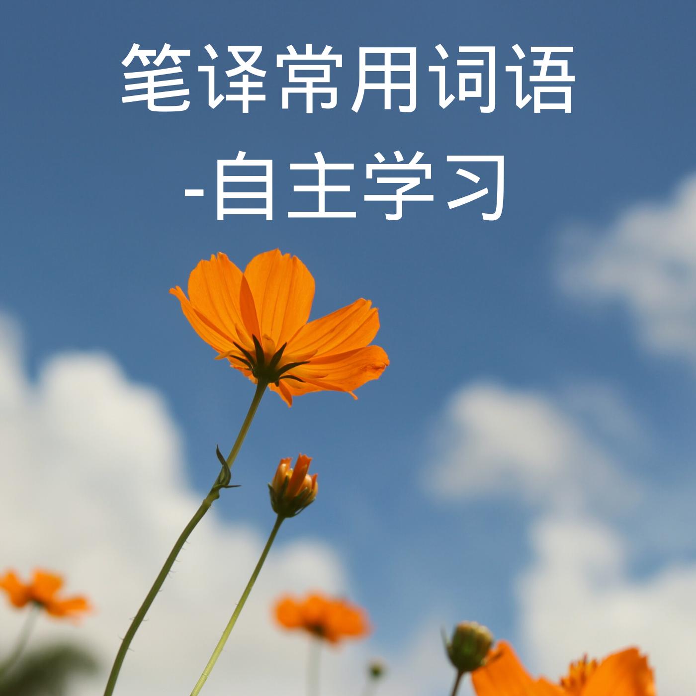 笔译常用词语-自主学习
