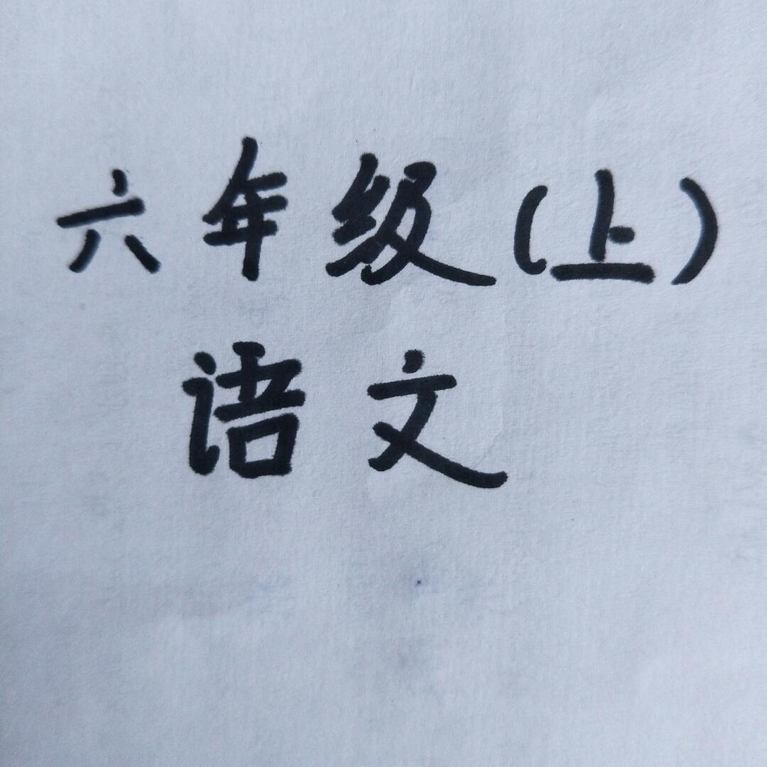 六年级上册语文